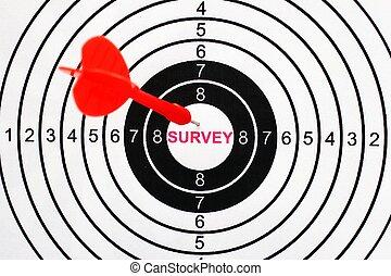 Survey target