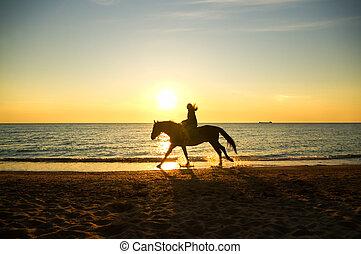 niña, caballo, costa