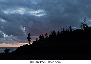 Treeline with Intense Clouds - Silhouette of the treeline at...