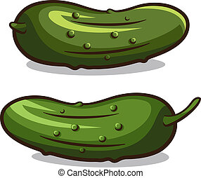 Cucumber vector illustration isolated on a white background