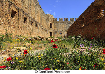 Poppies in castle ruins - Poppies, mallows and other...