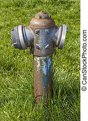 Rusty fire hydrant standing in the grass