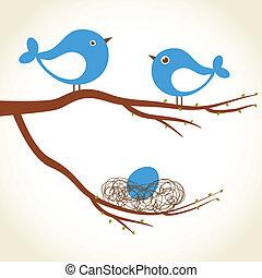 Cute beauty  birds on the tree branch