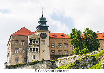 Castle Pieskowa Skala in National Ojcow Park, Poland