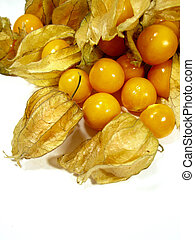 Physalis fruits - Bunch of physalis fruits close together...