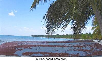 caribbean beach - dominican beach