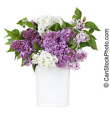 Lilac flowers in vase. Isolated on white background