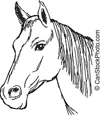 bay horse - hand drawn, sketch, cartoon illustration of head...