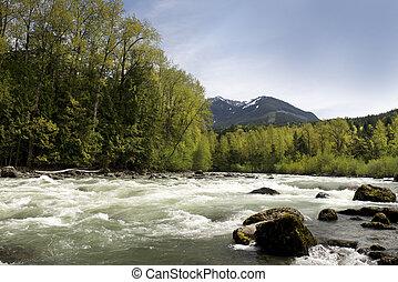 Chilliwack River near Sardis (Chilliwack) British Columbia
