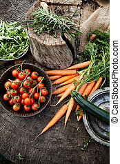 Vegetables - Fresh organic vegetables Food background...