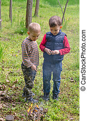 Two small boys lighting a fire in woodland setting fire to a...