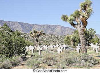 Joshua Tree Cemetery - Cemetery with Yucca Tree