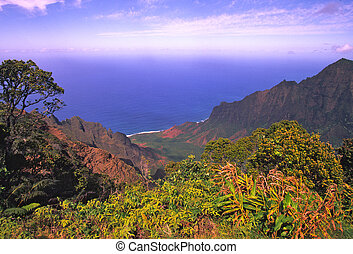 Scenic View on Kauai - a scenic view of the pacific from...