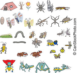 Insects Vector - Wild Insects on white bg