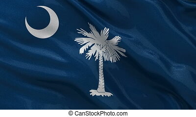 State flag of South Carolina loop - US state flag of South...