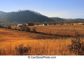 Rural Tennessee Farm - Abandoned farm near the bank of the...