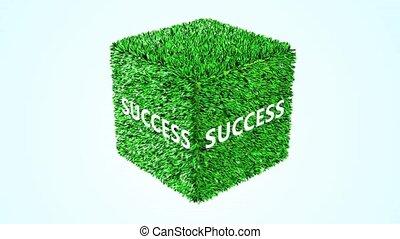 green cube Success 360 loop animati