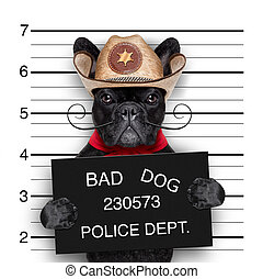 mexican mugshot dog - bad mexican dog in a police mugshot
