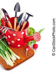 花園, 蔬菜, 上水, 罐頭, 新鮮, 工具