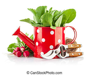 Green leaves in red watering can and tools for gardening