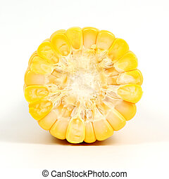 cross section of corn isolated on the white background