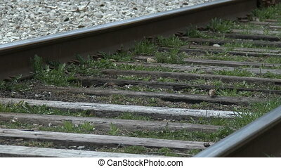 Railway tracks beside Transcanada trail in Guelph, Ontario,...