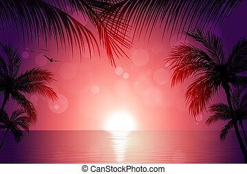 Tropical Sunset - beautiful tropical sunset background with...