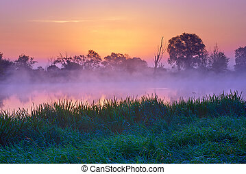 Beautiful dawn over The Narew River, Poland. Nature reserve....
