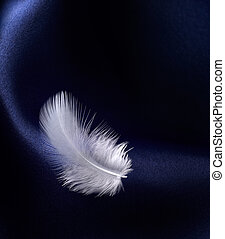 feather with satin - white feather on blue satin with curve...