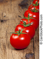 Close Up view of Fresh ripe Tomatoes in a Row