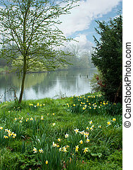 Spring flowers by the pond