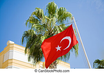 turkish flag and green palm