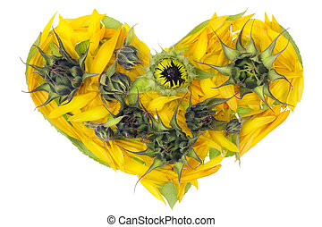 Abstract sunflowers heart