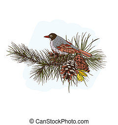 Pine branches with bird - Colored pine branches with cones...