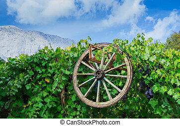 Old wheel and grape on moutains sky background - Old wheel...