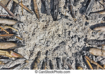 ashes, coals and firewood - Our life is ashes, coals and...