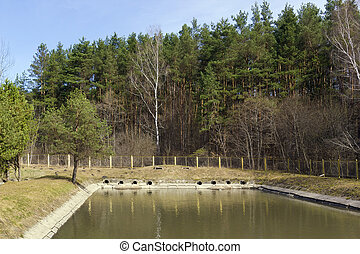 Sewer drains of the small city - Treatment facilities of...