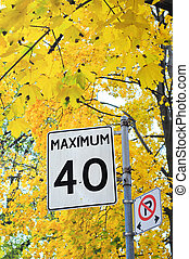 Maximum 40 kilometers street sign
