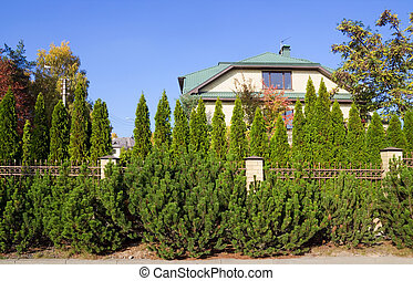 Green fence of trees and shrubs - The villa behind the green...