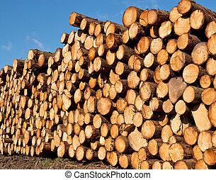 freshly cut timber - woodpile of freshly cut lumber awaiting...