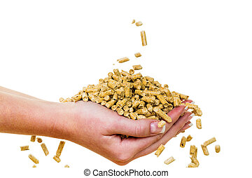 hand with pellets as an old natie energy - alternative...