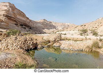 Canyon of Wadi Ash Shuwaymiyyah (Oman) - Pond in Canyon of...