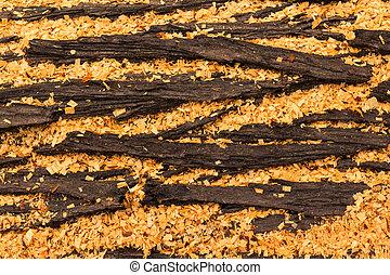 Cupressus macrocarpa Bark Pod - Cupressus macrocarpa bark...