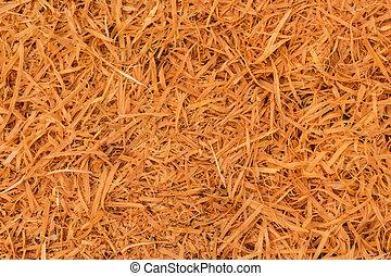 Cupressus Macrocarpa Shavings - Cupressus macrocarpa...