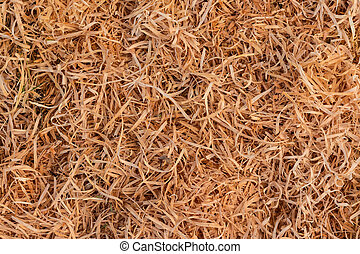 Macrocarpa Shavings - Cupressus macrocarpa shavings made...