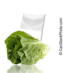 Healthy and organic food concept Fresh Romain Lettuce with...