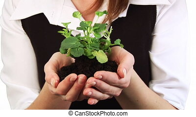 Woman Holding a plant in her hand - HD footage of a Woman...