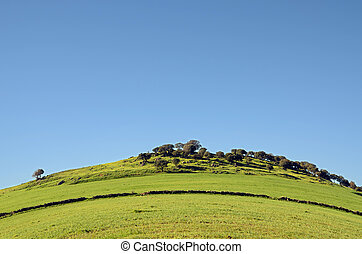 hill and green meadows in Extremadura, Spain