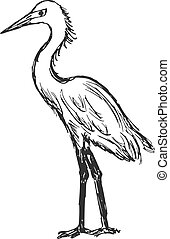 heron - hand drawn, cartoon, sketch illustration of heron