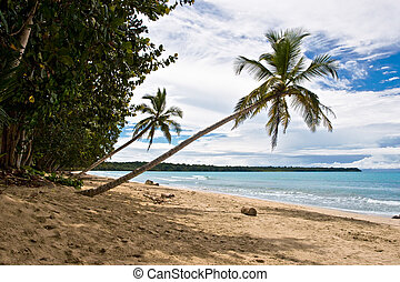 Tropical View - View over a tropical beach in Costa Rica